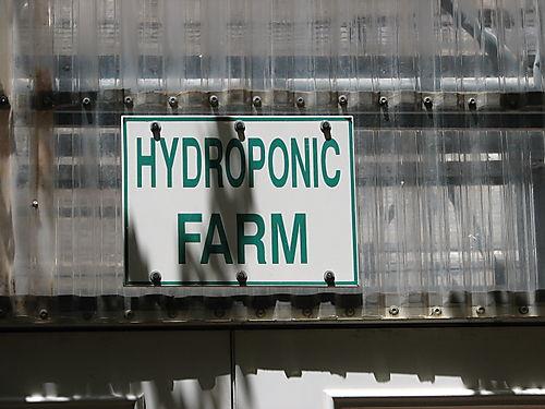 Hydroponic Farm- CuisinArt Hotel