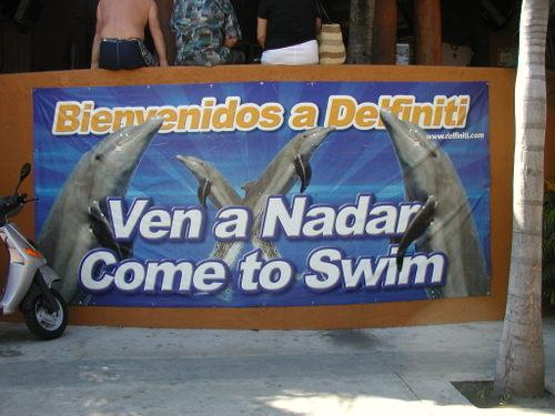 Dolphin Entrance